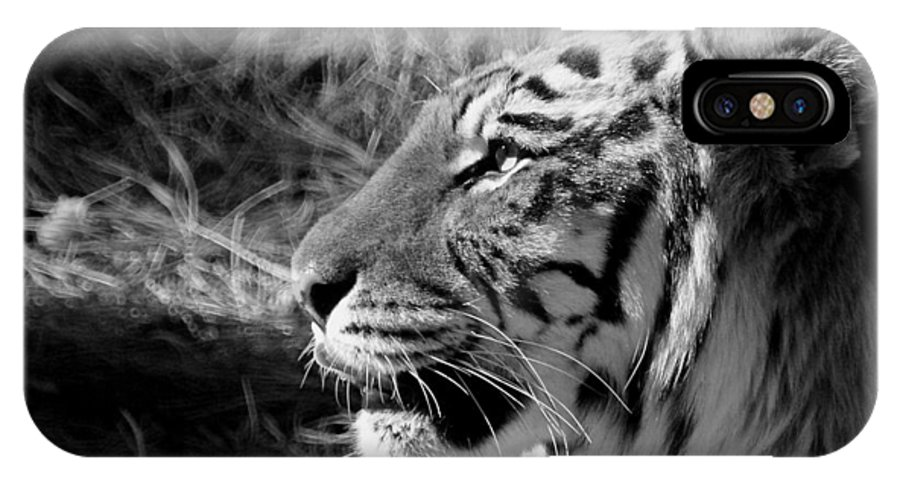 Tiger IPhone X Case featuring the photograph Tiger 2 Bw by Ernie Echols