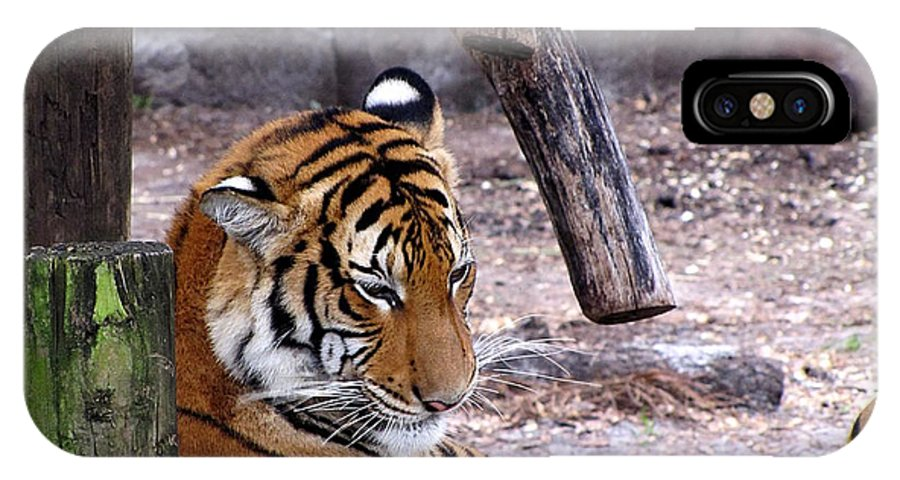 Tiger IPhone X Case featuring the photograph Tiger by Chris Mercer