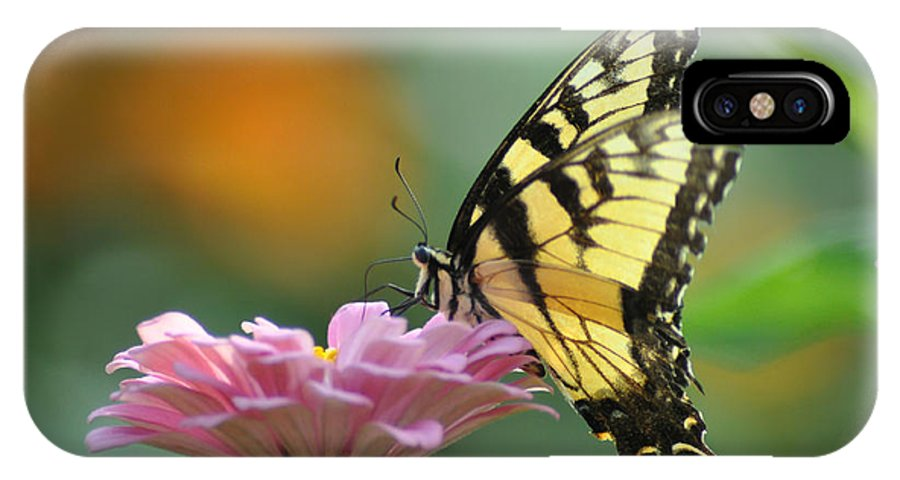 Tiger Swallowtail IPhone X Case featuring the photograph Tiger Swallowtail Butterfly by Bill Cannon
