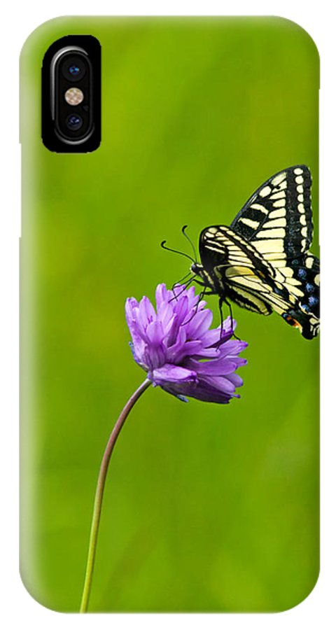 Flora IPhone X Case featuring the photograph Tiger Swallowtail by Randall Ingalls