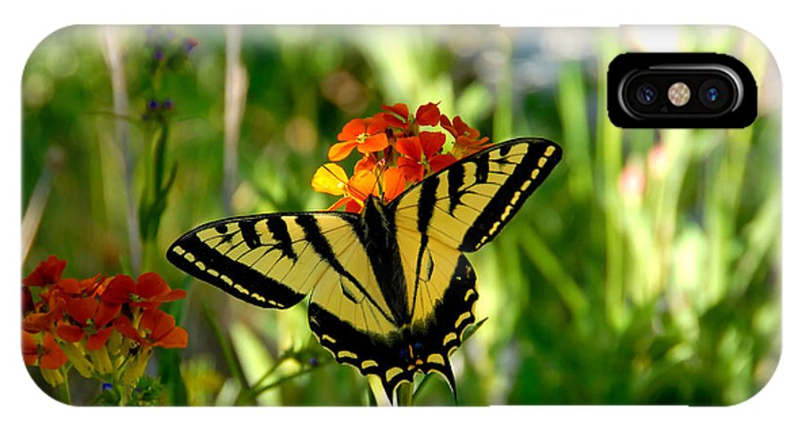Tiger Tail Butterfly IPhone X Case featuring the photograph Tiger Tail Beauty by David Lee Thompson