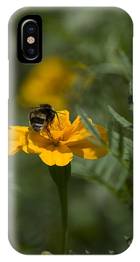 Yellow IPhone X Case featuring the photograph To Be Or Not To Bee by Adrian Bud
