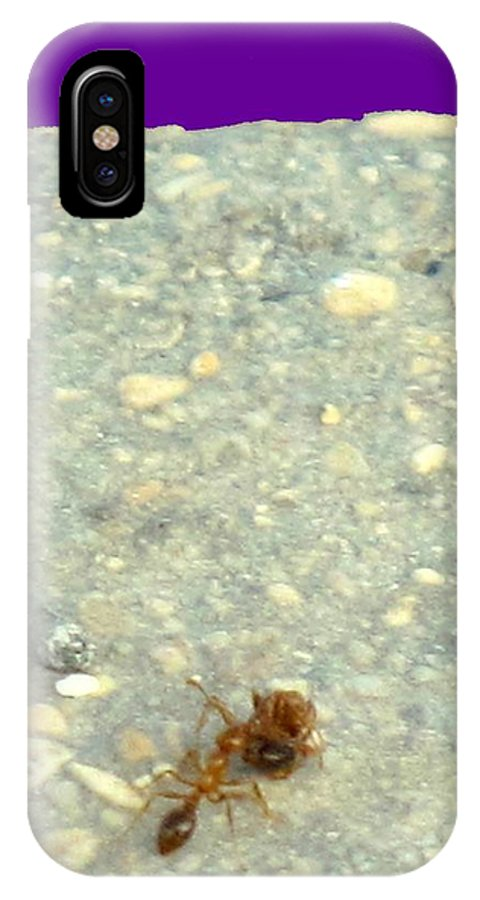 Ant IPhone X Case featuring the photograph To The Edge by Ian MacDonald