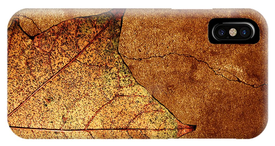 Autumn IPhone X Case featuring the photograph Today Everything Changes by Dana DiPasquale