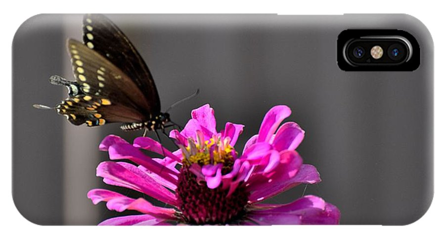 Flowers IPhone X / XS Case featuring the photograph Todays Art 1406 by Lawrence Hess