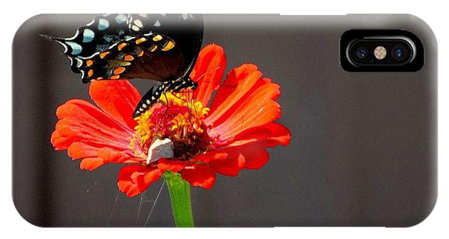 Flower IPhone X / XS Case featuring the photograph Todays Art 1420 by Lawrence Hess