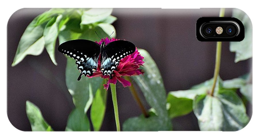 Flower IPhone X / XS Case featuring the photograph Todays Art 1424 by Lawrence Hess