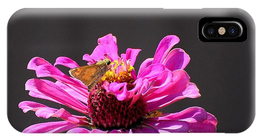 Flower IPhone X / XS Case featuring the photograph Todays Art 1426 by Lawrence Hess