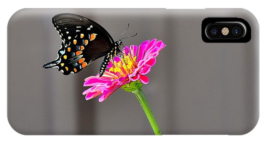 Flower IPhone X / XS Case featuring the photograph Todays Art 1427 by Lawrence Hess
