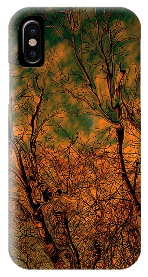Trees IPhone Case featuring the photograph Tree Abstract by Linda Sannuti