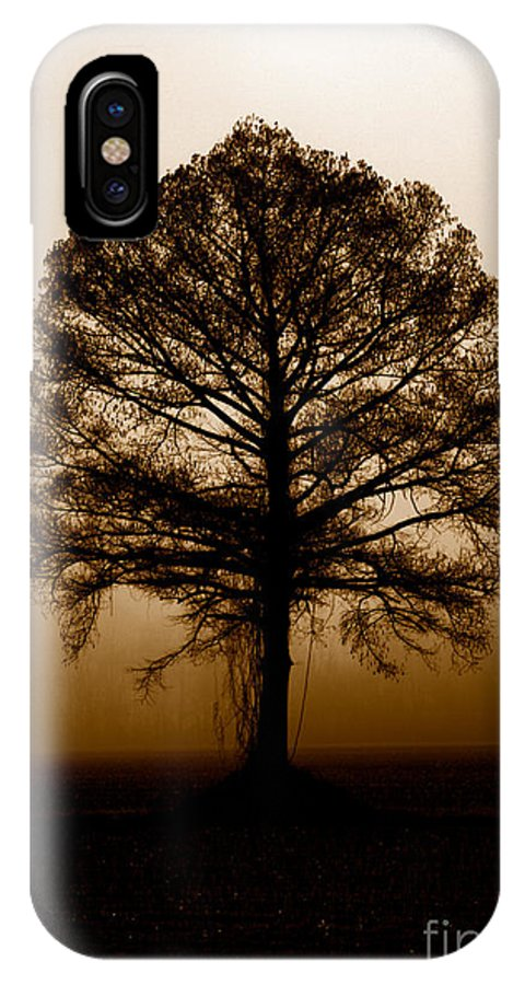 Trees IPhone X Case featuring the photograph Tree by Amanda Barcon
