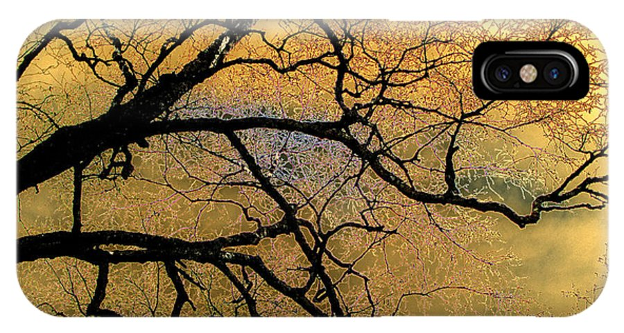 Scenic IPhone X Case featuring the photograph Tree Fantasy 7 by Lee Santa
