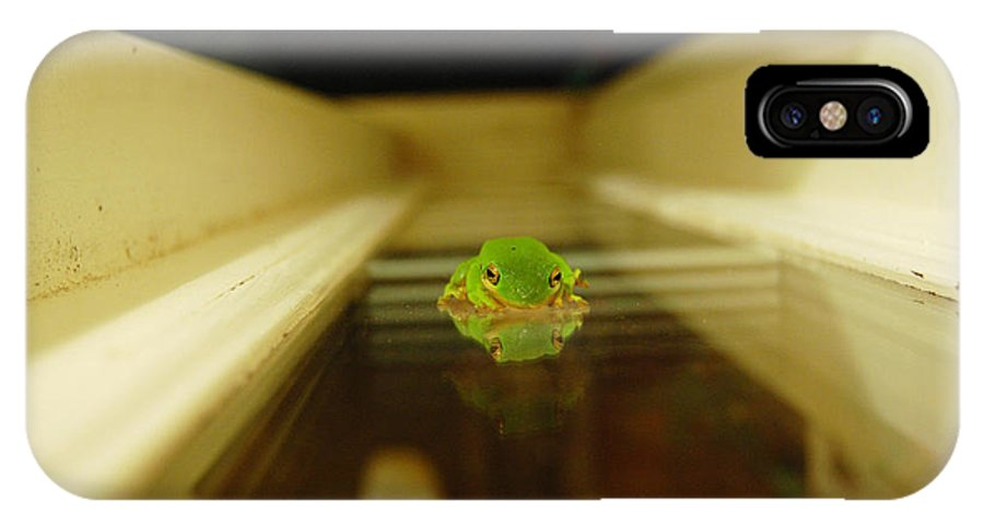 Frog IPhone X Case featuring the photograph Tree Frog II by Robert Meanor