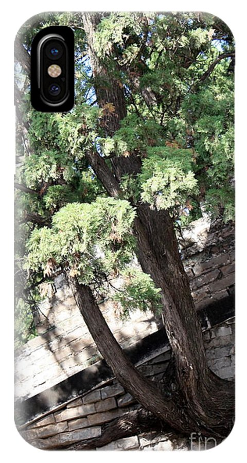 China IPhone X Case featuring the photograph Tree Growing Through Wall by Carol Groenen