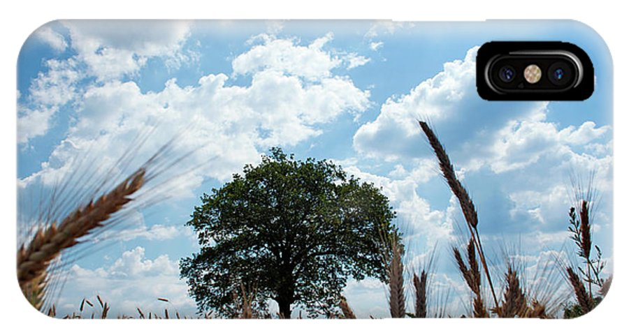 Tree IPhone X Case featuring the photograph Tree In The Field by Katilda
