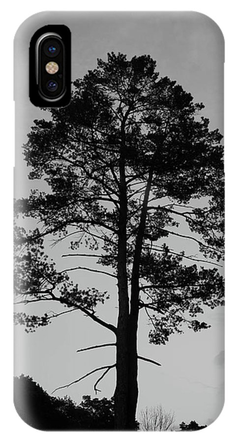 Olga Olay IPhone X Case featuring the photograph Tree Silhouette In The Dark by Olga Olay