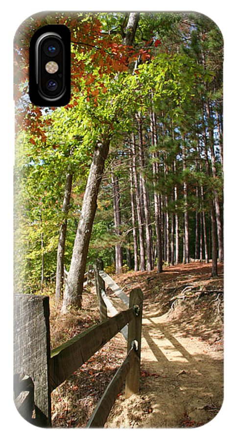 Tree IPhone Case featuring the photograph Tree Trail by Margie Wildblood