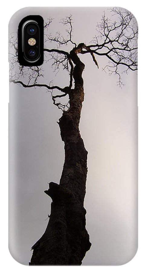 Tree IPhone X Case featuring the photograph Tree by Vishal Mutakekar