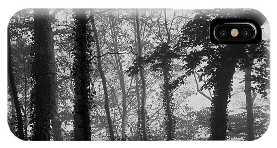 Nature IPhone X Case featuring the photograph Trees In Mist by David Halperin