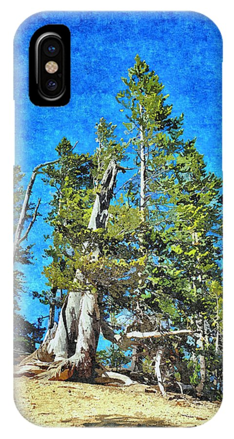 Trees IPhone X Case featuring the photograph Trees On The Edge 2 by John Trommer