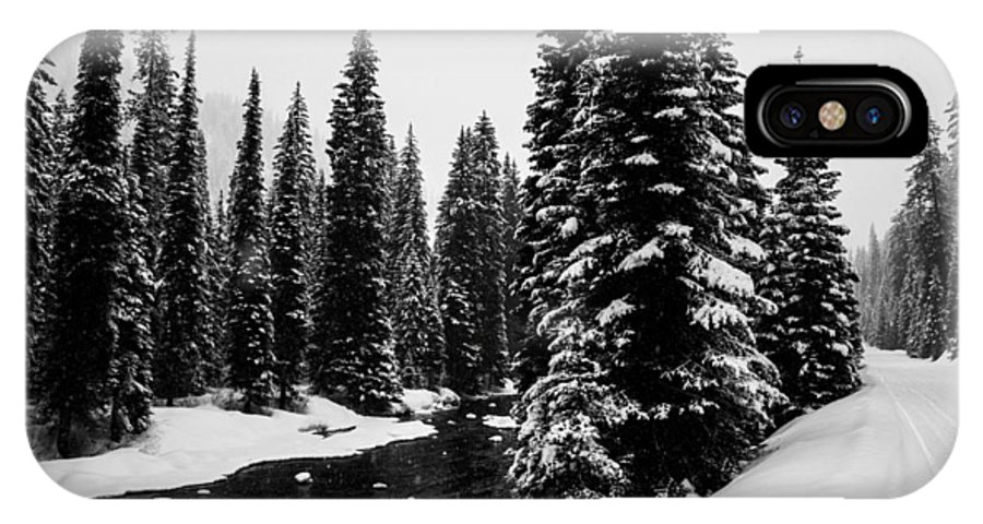 Mccall IPhone X Case featuring the photograph Trees On The River by Angus Hooper Iii