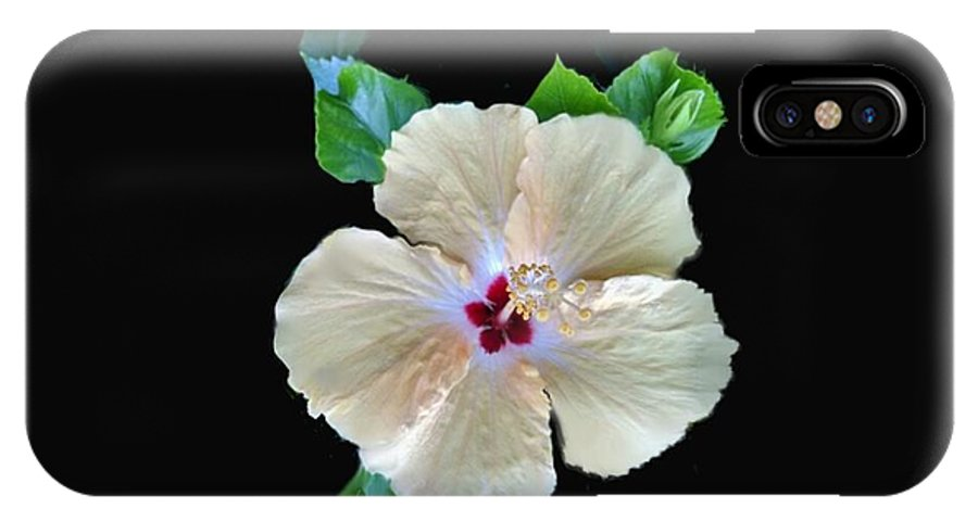 Hibiscus IPhone X Case featuring the photograph Tropical Dream by Dana Shawn