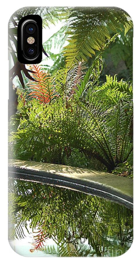 Tropical Plants IPhone Case featuring the photograph Tropical Mirror by D Nigon