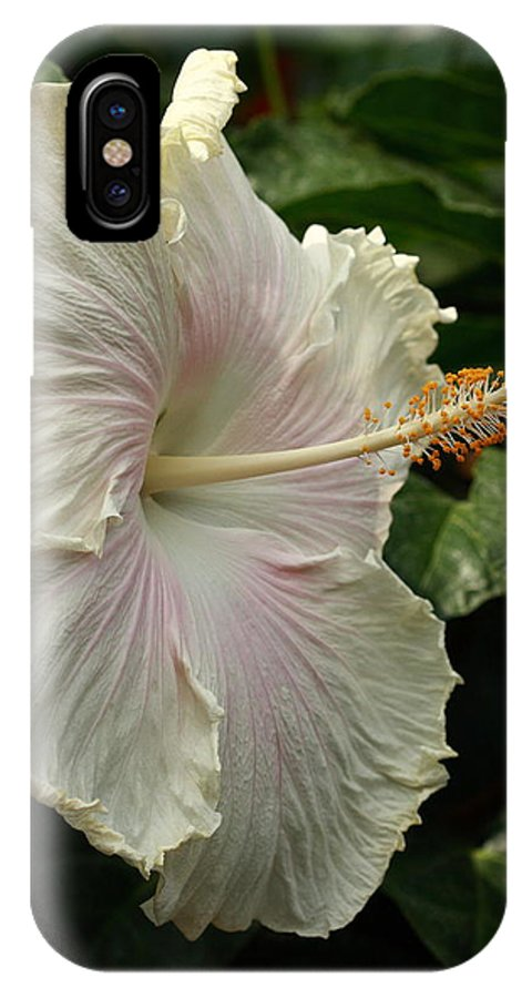 Flower IPhone X Case featuring the photograph Tropical Wedding by Paul Slebodnick