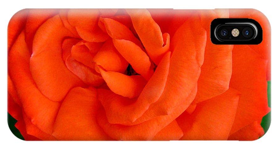 Tropicana Rose IPhone X Case featuring the photograph Tropicana Rose by Debra   Vatalaro