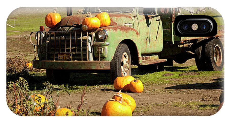 Pumpkins IPhone X Case featuring the photograph Trucked In Pumpkins by Michael Riley