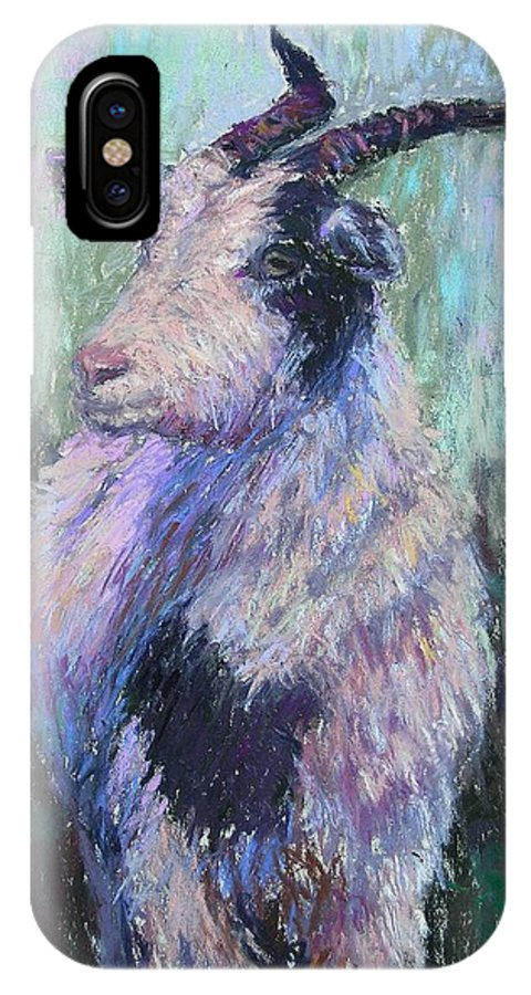 Farm Animals IPhone X Case featuring the painting Tucker Redux by Susan Williamson