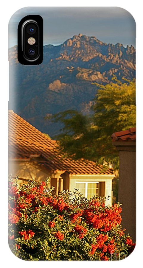 Mountains IPhone X Case featuring the photograph Tucson Beauty by Nadine Rippelmeyer