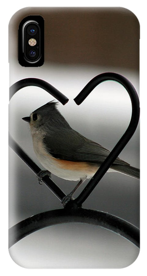 Titmouse IPhone X Case featuring the photograph Tufted Titmouse In A Heart by George Jones