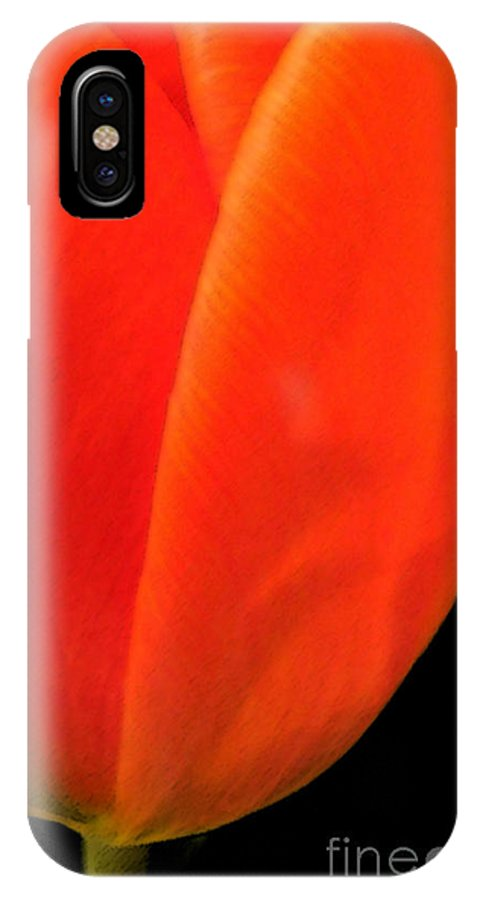 Tulips IPhone Case featuring the photograph Tulip by Amanda Barcon