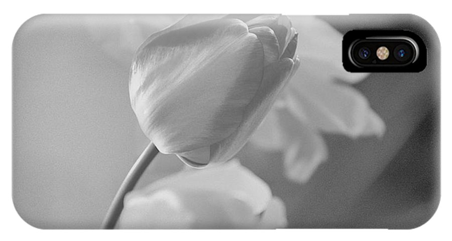 Tulip IPhone X Case featuring the photograph Tulip Black N White by Wendy Fox