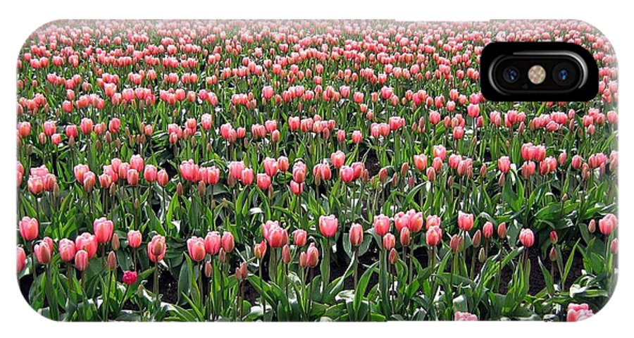 Agriculture IPhone X Case featuring the photograph Tulip Town 5 by Will Borden
