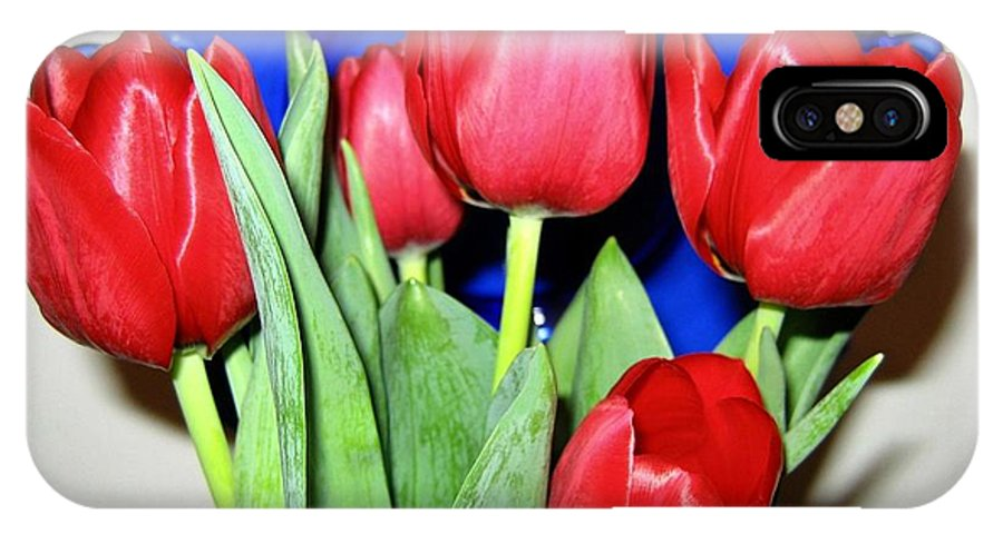 Tulips IPhone X Case featuring the photograph Tulipfest 1 by Will Borden