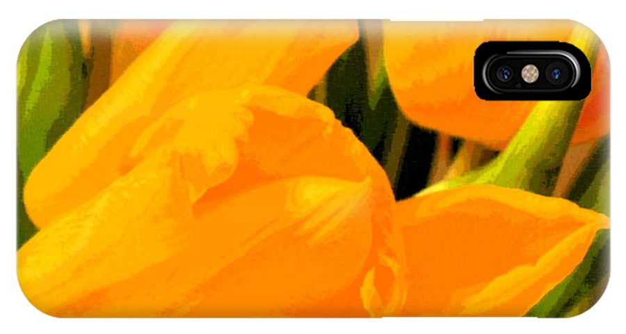 Tulip IPhone Case featuring the photograph Tulips by Amanda Barcon