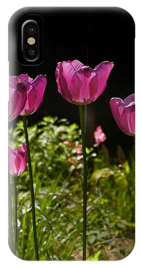 Tulips IPhone X Case featuring the photograph Tulips by Bill Cannon