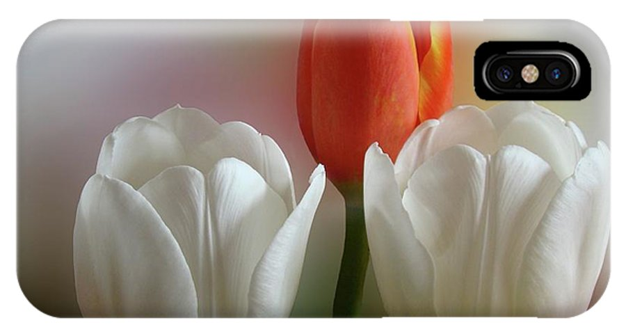 Spring Flowers IPhone X Case featuring the photograph Tulips by Sandy Keeton