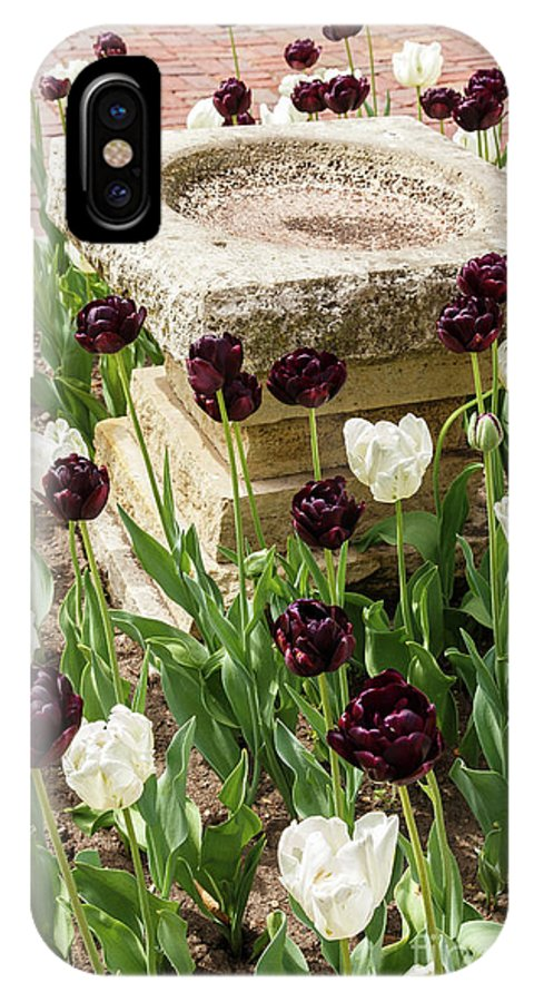 Tulip IPhone X / XS Case featuring the photograph Tulips Surround The Bird Bath by Terri Morris