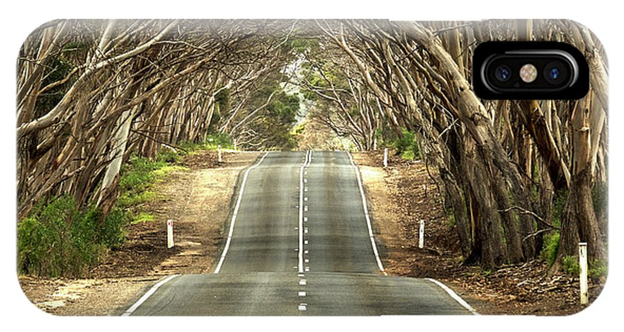 Road IPhone X Case featuring the photograph Tunnel Of Trees by Catherine Reading