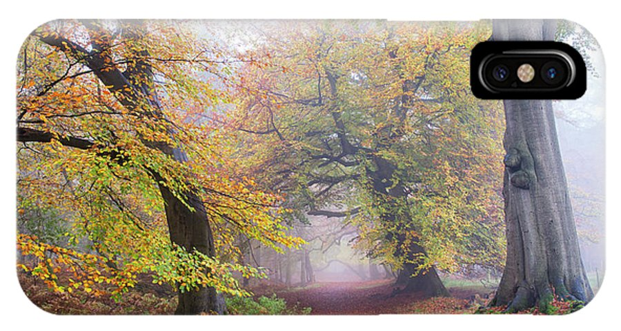 Beech Trees IPhone X Case featuring the photograph Turning Of The Trees by Tim Gainey