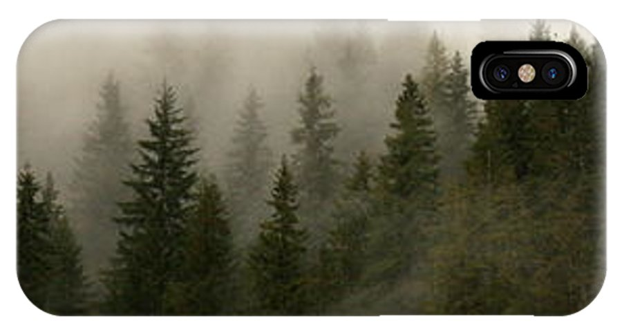 Forks IPhone X Case featuring the photograph Twilight Mist by Carol Groenen