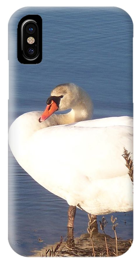 Twisted IPhone X Case featuring the painting Twisted White Swan by Eric Schiabor