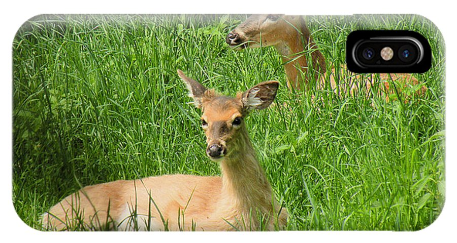 Deer IPhone X Case featuring the photograph Two Deer In Tall Grass by Rosalie Scanlon