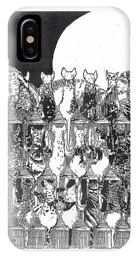 Cats IPhone Case featuring the drawing Two Dozen And One Cats by Seth Weaver