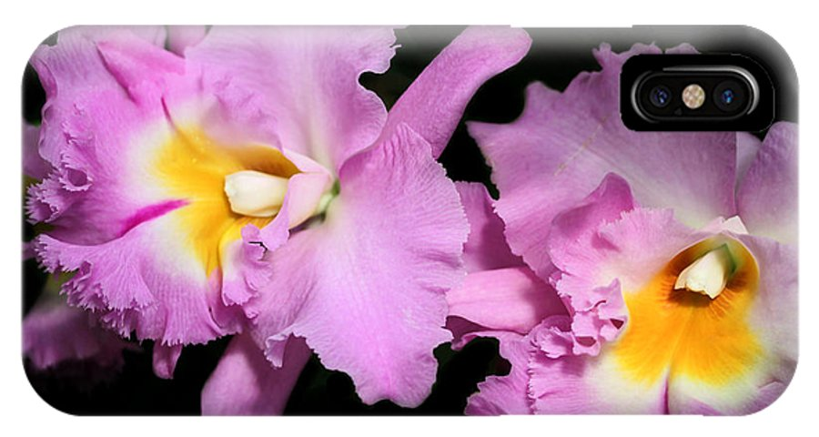 Orchid IPhone X Case featuring the photograph Two Frilly Orchids by Sabrina L Ryan