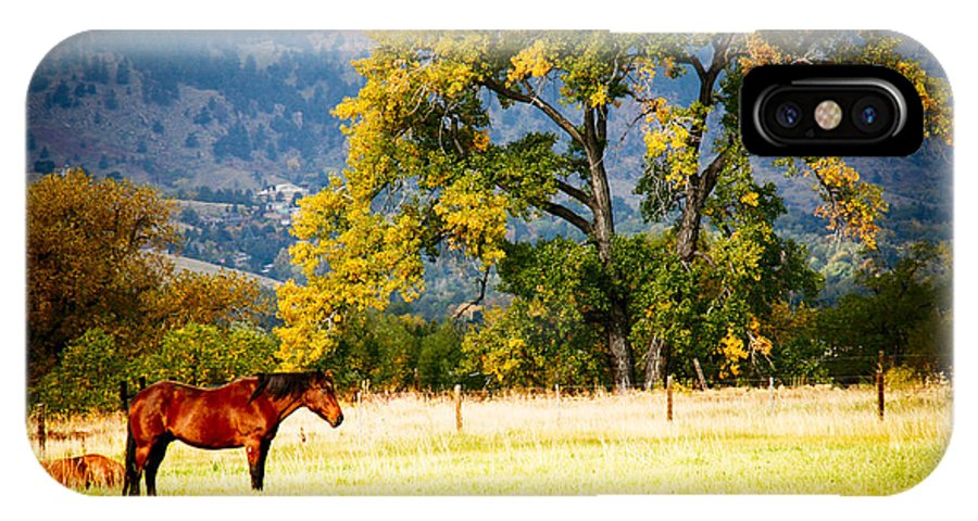 Animal IPhone X Case featuring the photograph Two Horses by Marilyn Hunt