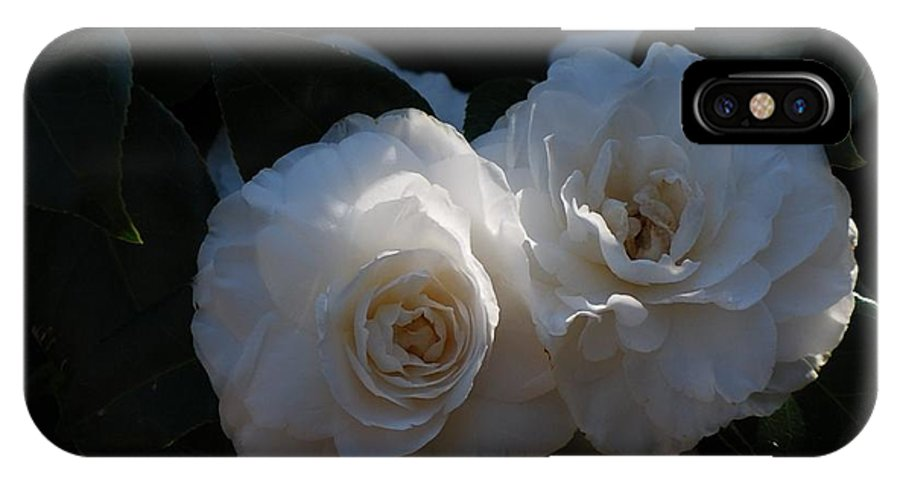 Roses IPhone X Case featuring the photograph Two White Roses by Ruth Yvonne Ash